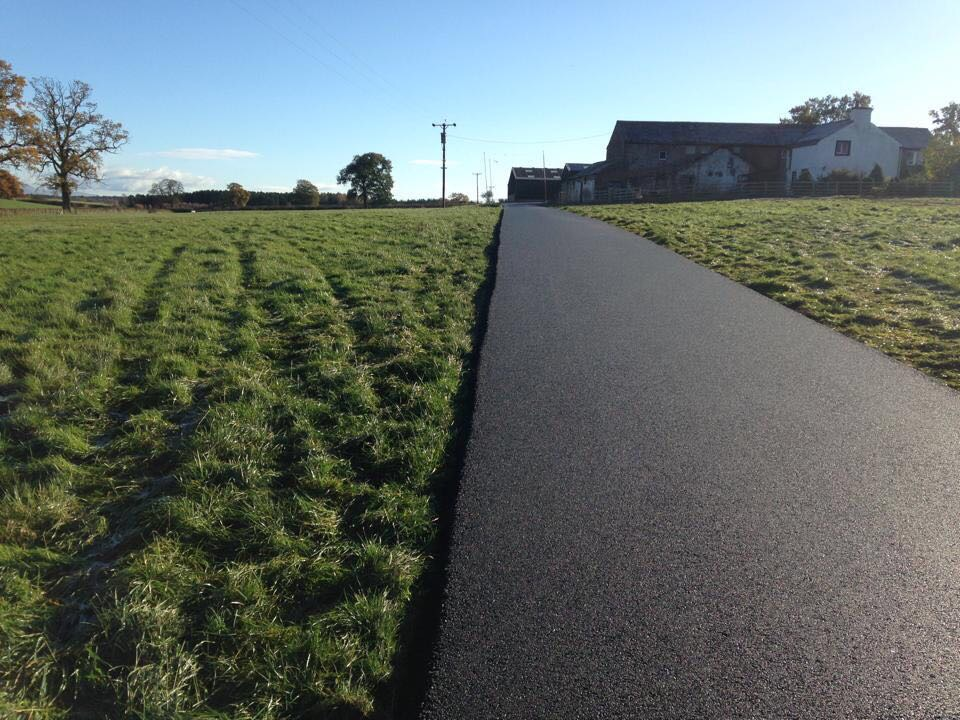 Dinsdale Path (2)